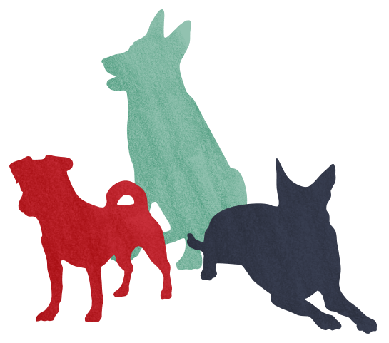 about-dogs-min
